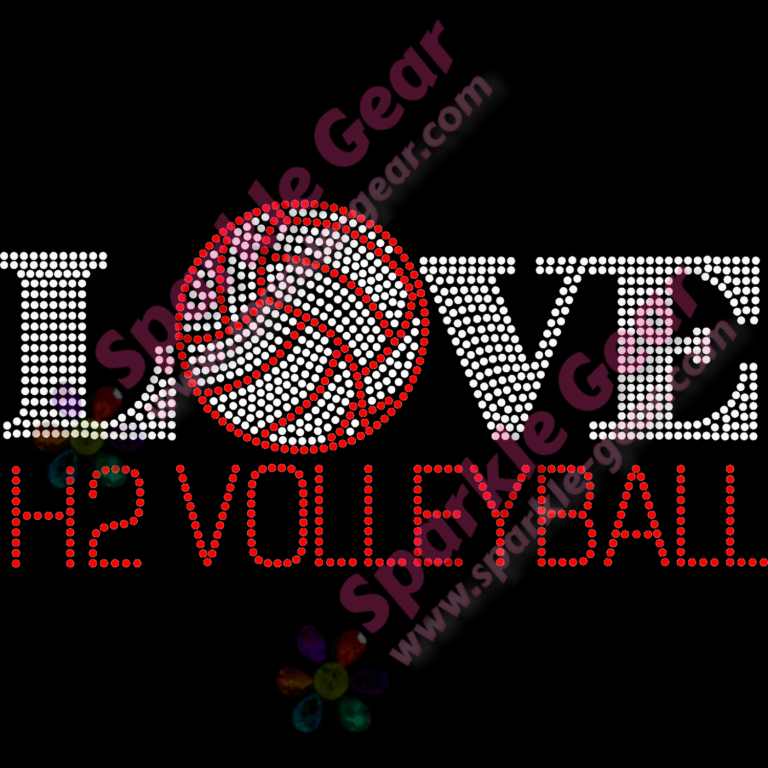 H2 Volleyball